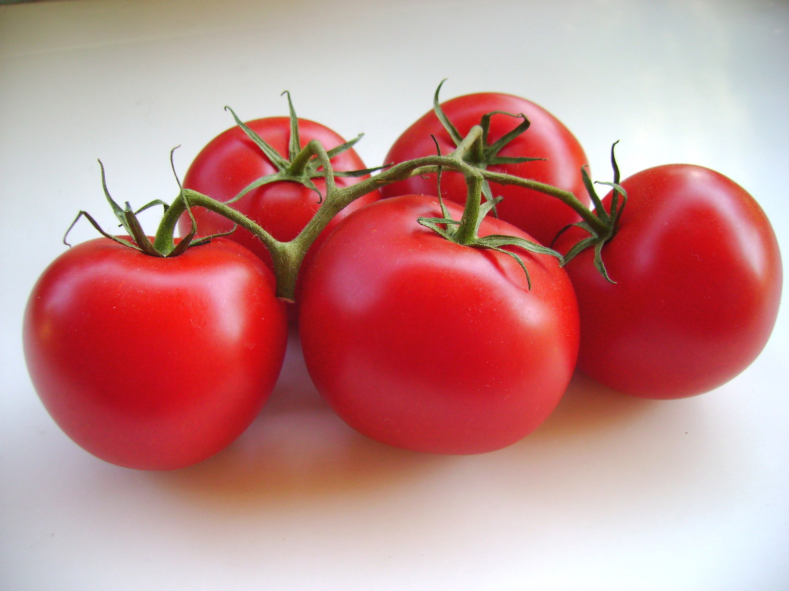 Une tomate OGM pour diminuer les risques de maladies cardiaques