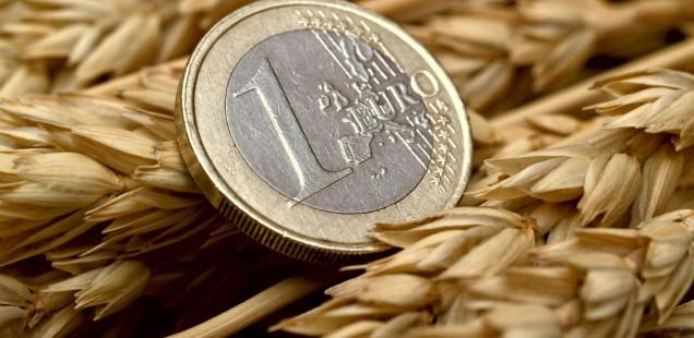 Le revenu moyen des céréaliers estimé à 72.100 euros en 2012