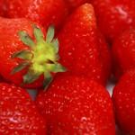 Fruits et légumes : un outil d'aide à la décision permettant de réduire de 35 % les doses appliquées