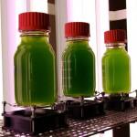Test sur route : Un premier pas réussi pour les biocarburants de troisième génération