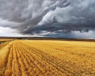 Le nombre d'exploitants agricoles diminue en France