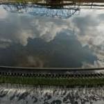 Les eaux usées, vecteur porteur pour le staphylocoque doré