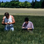 France : des emplois à pourvoir dans la filière semences