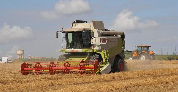 Turbo Cereal, la néobanque qui veut révolutionner le monde agricole