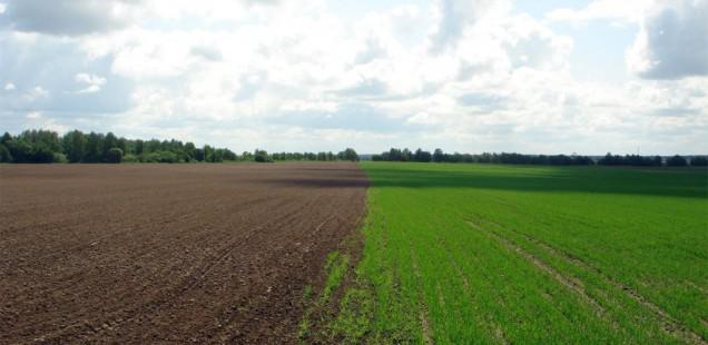 FranceAgrimer lance un dispositif d'aide aux équipements aidant à la transition « agro-écologique »