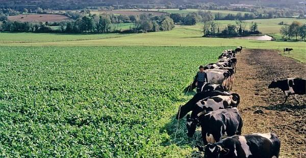 Lancement du programme Beef Carbon