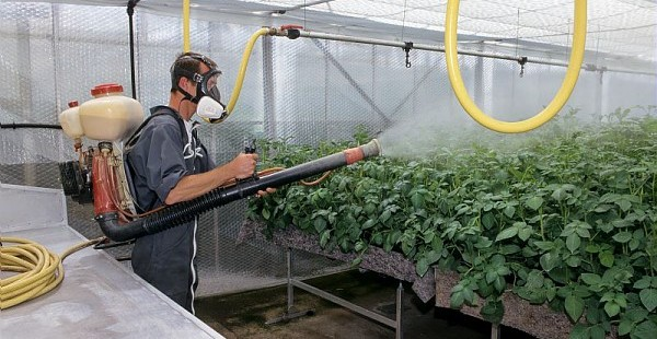 Les entrepreneurs pourront retirer les produits phytosanitaires de leurs clients ne possédant pas le CIPP