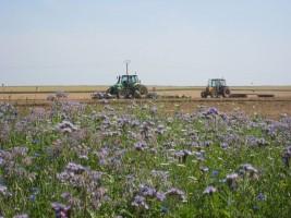 plateforme-biodiversid-marchelepot-18juil2013-jachere-apicole-tracteurs
