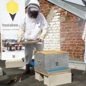 Une ruche connectée pour veiller sur les colonies d'abeilles