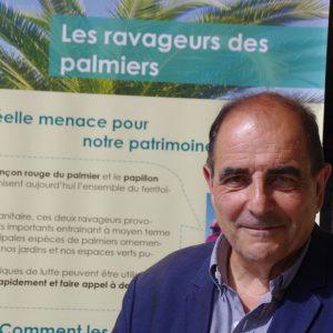 «Le charançon rouge du palmier: une nouvelle espèce protégée ?», par Hervé Pietra