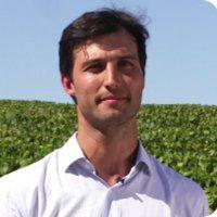 Le «deep learning» au service des vignes françaises !