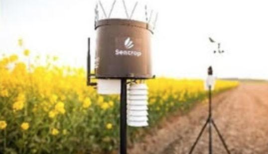Soufflet fait appel à une startup pour équiper ses clients de stations agro-météo