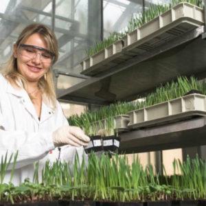 Bayer inaugure à Lyon un nouveau centre d'innovation