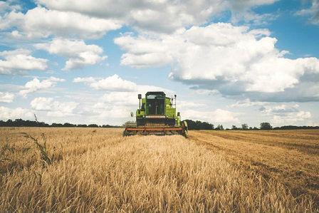 Les instituts techniques agricoles livrent leur réflexion sur la blockchain