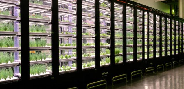 L'Indoor arrive sur le marché agricole français