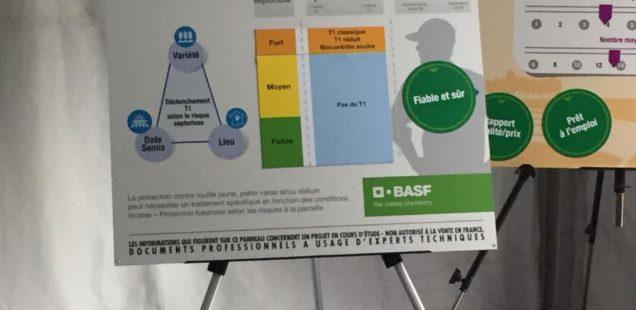 BASF : Le nouveau fongicide Revysol devrait arriver en France pour la campagne 2019-2020
