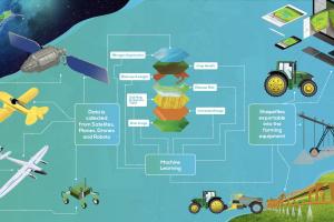 Basf et Telus Ventures investissent dans la startup d'agrotechnologie Hummingbird Technologies