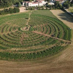 Le verger circulaire est-il viable sur le moyen terme ?