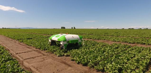 Naïo annonce un partenariat avec un semencier allemand