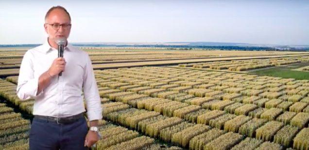 BASF annonce une quinzaine d'innovations à venir en biocontrôle